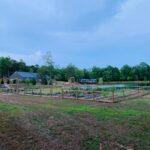 Splendor Pond | Mooresville, NC